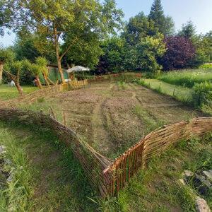 Juni 2021 – Weidenzaun schützt vor Hasen